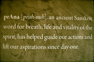 the roots and values behind prAna