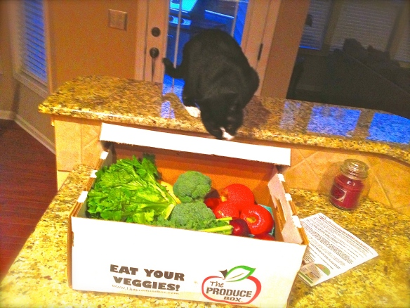 My produce box delivery, how I (and Louie) plan each week's meals.